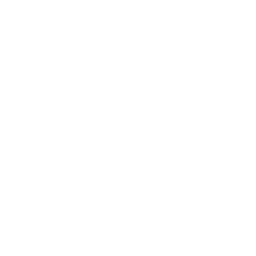 white silhouette of a figure on a pommel horse