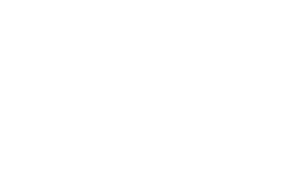 white silhouette of a figure on pommel horse